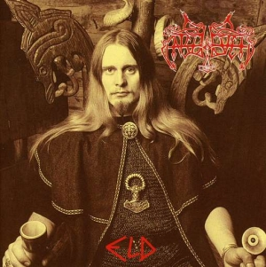 Enslaved eld - Interview - Grutle Kjellson of Enslaved