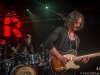 winery-dogs-11