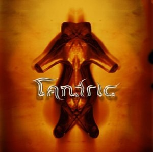 Tantric Album - Interview - Hugo Ferreira of Tantric - A Man and His Vision