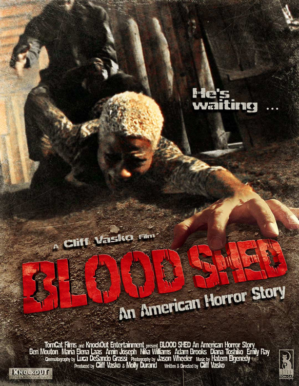 Bloodshed poster - Blood Shed: An American Horror Story (Movie review)