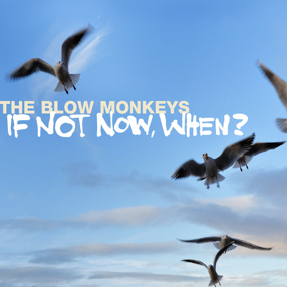 the blow monkeys 158697 if not now when - The Blow Monkeys - If Not Now, When? (Album Review)