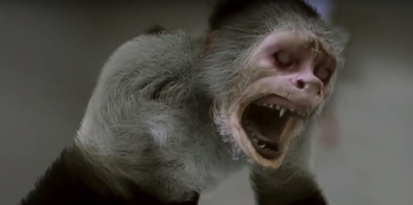zoombies 2 - Zoombies (Movie Review)