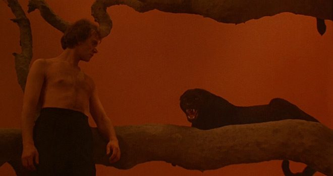 cat people 3 - Cat People - Lascivious Leopards 35 Years Later