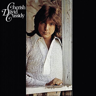 david album 1 - David Cassidy - Forever A Teen Heartthrob