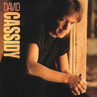 david album 5 - David Cassidy - Forever A Teen Heartthrob