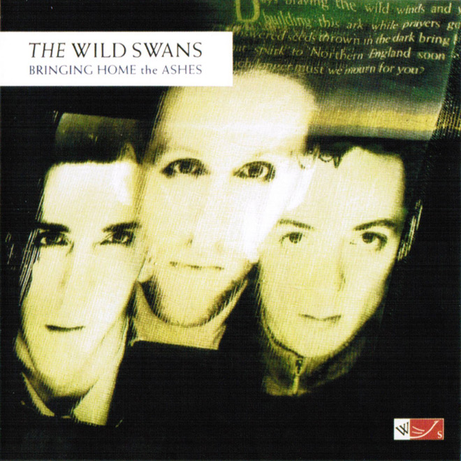 swans cover - The Wild Swans - Bringing Home the Ashes 30 Years Later