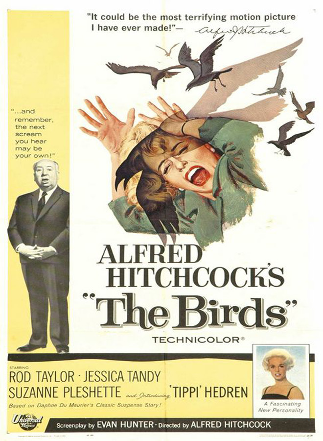 birds poster - The Birds - 55 Years of Ornithophobia