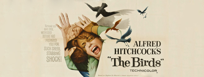 birds slide - The Birds - 55 Years of Ornithophobia
