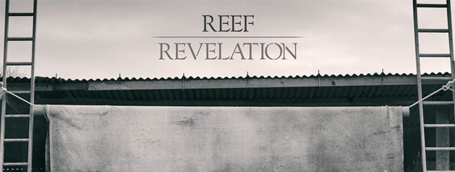 reef slide - Reef - Revelation (Album Review)