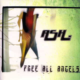 free all angels - Interview - Tim Wheeler of Ash