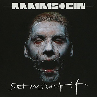 rammstein sehnsucht - Interview - Richard Z. Kruspe of Emigrate & Rammstein