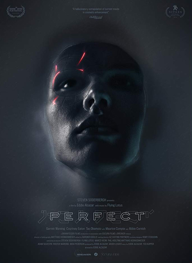 perfect poster - Perfect (Movie Review)