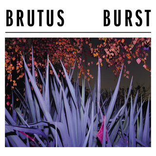 brutus burst - Interview - Peter Mulders & Stefanie Mannaerts of Brutus