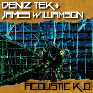 acoustic ko - Interview - The Stooges' James Williamson
